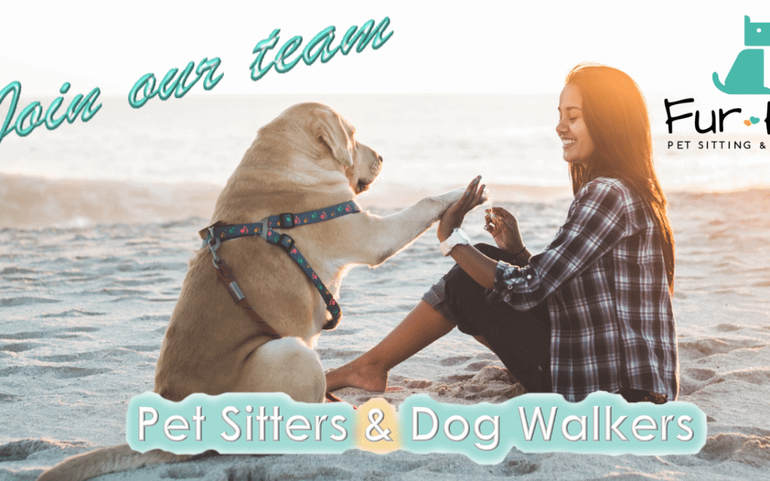 Hiring: Pet Sitting and Dog Walking Jobs