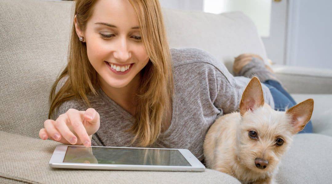 Overnight Pet Sitter Jobs