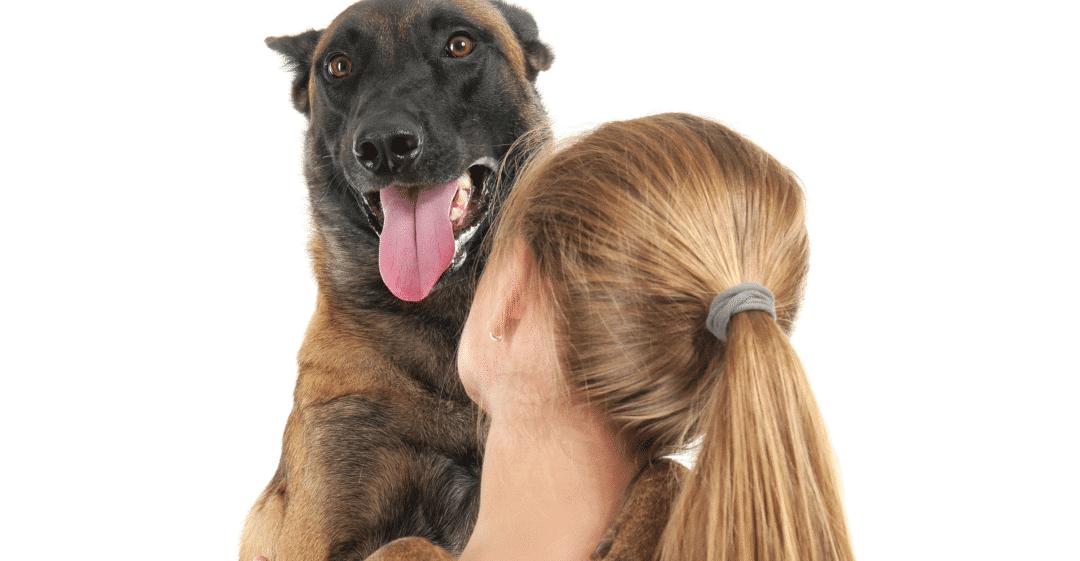 How Long Do Pet Sitting Visits & Dog Walks Last?